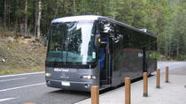 Milford Sound Day Trip Including Cruise and Luxury Coach from Queenstown, Queenstown, Day Trips