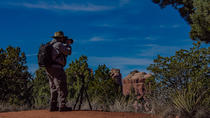 Sedona Photography Tour from Phoenix, Phoenix, Day Trips