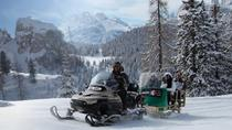 Snowmobile & Sledding and The Great Dolomites Road Private Tour by car, Bolzano, Ski & Snow