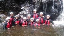 Gorge Walking Adventure in Snowdonia, Snowdonia, Nature & Wildlife