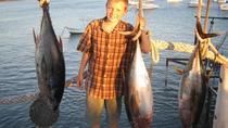 Deep Sea Fishing - Shared Boat, Mazatlan, Day Cruises