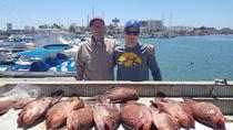 Inshore Bottom Fishing - Shared Boat, Mazatlan, 4WD, ATV & Off-Road Tours