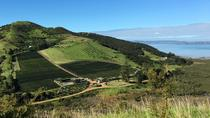 Half-Day Vineyards and Bush Walk on Waiheke Island, Auckland, Walking Tours