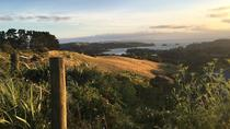 Waiheke Island Te Ara Hura 5-Day Walking Package, Auckland, City Tours