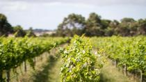 Half Day Phillip Island Wine and Beer Trail Tour, Phillip Island, Wine Tasting & Winery Tours