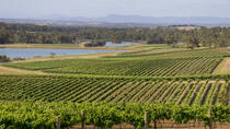 Hunter Valley Wine and Wildlife Tour from Sydney Including Walkabout Wildlife Park, Sydney, ...