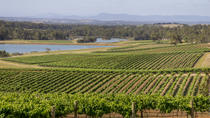 Hunter Valley Wine and Wildlife Tour from Sydney with Walkabout Wildlife Park, Sydney, Day Trips