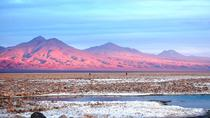 Round-Trip Shared transfer: Piedras Rojas and Atacama Salt, San Pedro de Atacama, Day Trips