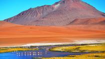 Salar de Tara, San Pedro de Atacama, Day Trips