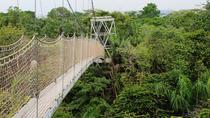 Lekki Conservation Centre Private Tour from Lagos, Lagos, Nature & Wildlife