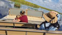 1-Hour Airboat Ride and Nature Walk with Naturalist in Everglades National Park, マイアミ