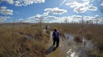 Ten Thousand Islands and Swamp Walk, Fort Lauderdale, Eco Tours