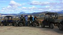 2.5-Hour Denali Wilderness ATV Adventure Tour, Denali National Park, 4WD, ATV & Off-Road Tours