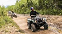 Denali ATV Trailblazer Tour, Denali National Park, 4WD, ATV & Off-Road Tours