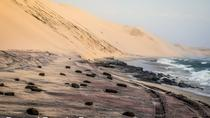 Sandwich Harbour in a 4x4 Vehicle: Half Day Guided Tour from Swakopmund, Swakopmund
