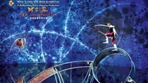 3-hour Private Transfer to Shanghai ERA Acrobatic Show from City Center, Shanghai, Private Transfers
