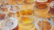 Santa Fe Craft Beer Tasting, Santa Fe, Walking Tours