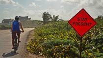 Tulum Insider's Bike Tour: Maya Ruins, Caribbean Beach, Art, and Food, Tulum, Bike & Mountain Bike...
