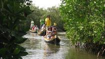 Mangroves Tour, Cartagena, Day Trips