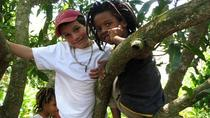 MoBay Highlight and Rastafarian indigenous Village Tour, Montego Bay, Cultural Tours