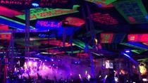 Senor Frog's Cancun One Night VIP Ticket, Cancun, Bar, Club & Pub Tours