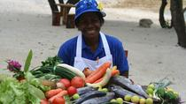 Half-Day Vanuatu Hunters and Gatherers Food Tour Including Cooking Class from Port Vila, Port Vila, ...