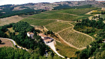 Guided Hiking Tour in Tuscany with Lunch Wine and Olive Oil Tasting, Florence, Private Day Trips