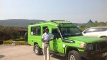3-Day Maasai Mara Safari, Nairobi, Multi-day Tours
