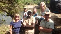 4 days Maasai mara and Nakuru National park tour, Nairobi, Multi-day Tours
