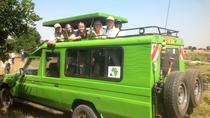 4 days Tsavo East, Tsavo west and Amboseli national park tours, Mombasa, Attraction Tickets