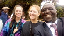 Coffee farm and factory tour from Nairobi city, Nairobi, Food Tours