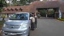OL PEJETA CONSERVANCY FULL DAY TOUR FROM NAIROBI, Nairobi, Full-day Tours
