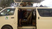 SAFARIS VON MOMBASA NACH TSAVO UND AMBOSELI NATIONALPARKS, Mombasa, Multi-day Tours