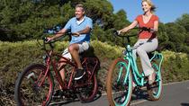 Historical Hollywood Cemetery Tour by Electric Bike, Richmond, Bike & Mountain Bike Tours