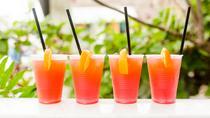 Key West Craft Cocktail Crawl, Key West, Food Tours