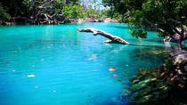 Shore Excursion: Vanuatu Cultural Tour and the Blue Lagoon from Port Vila, Port Vila, Ports of Call ...