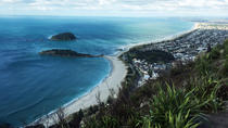 Shore Excursion: Half-Day Tauranga Highlights Tour, Tauranga, Ports of Call Tours