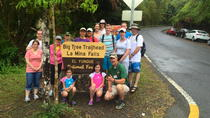 Rainforest Nature Walk to La Mina Waterfall, San Juan, Hiking & Camping