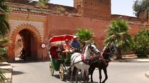 Marrakech by Horse-Drawn Carriage, Marrakech, Horse Carriage Rides