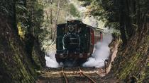West Coast Wilderness Railway: River and Rainforest from Strahan, Strahan, Rail Tours