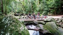 Goldsborough Goldfield Trail Electric Bike Tour from Cairns, ケアンズトロピカルノース