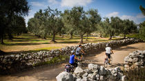 Cycling Across Salento: Capo di Leuca 4-Hour Bike Tour, Puglia, Bike & Mountain Bike Tours