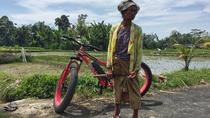 Half-Day Fat Tire Electric Bike Tour from Ubud, Ubud