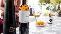 Wine Tasting and Lunch Experience from Barcelona, Barcelona, Wine Tasting & Winery Tours