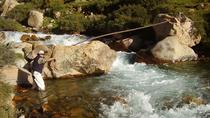 Fly Fishing in the Andes, Mendoza, with riverside barbecue, Mendoza, Day Trips
