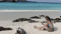 5-Day Galapagos Tour: Santa Cruz and Isabela Islands, Îles Galápagos