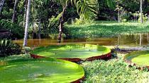 Peru 3 Day Ecomagic Jungle Tour, Puerto Maldonado, Cultural Tours