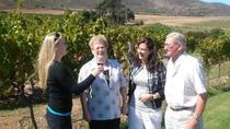 Full-Day Private Wine Tour from Paarl, Franschhoek, Day Trips