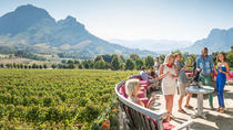 Full-Day Private Wine Tour from Paarl, Stellenbosch