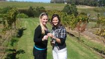 Half-Day Guided Private Wine Tour from Franschhoek, Franschhoek, Half-day Tours
